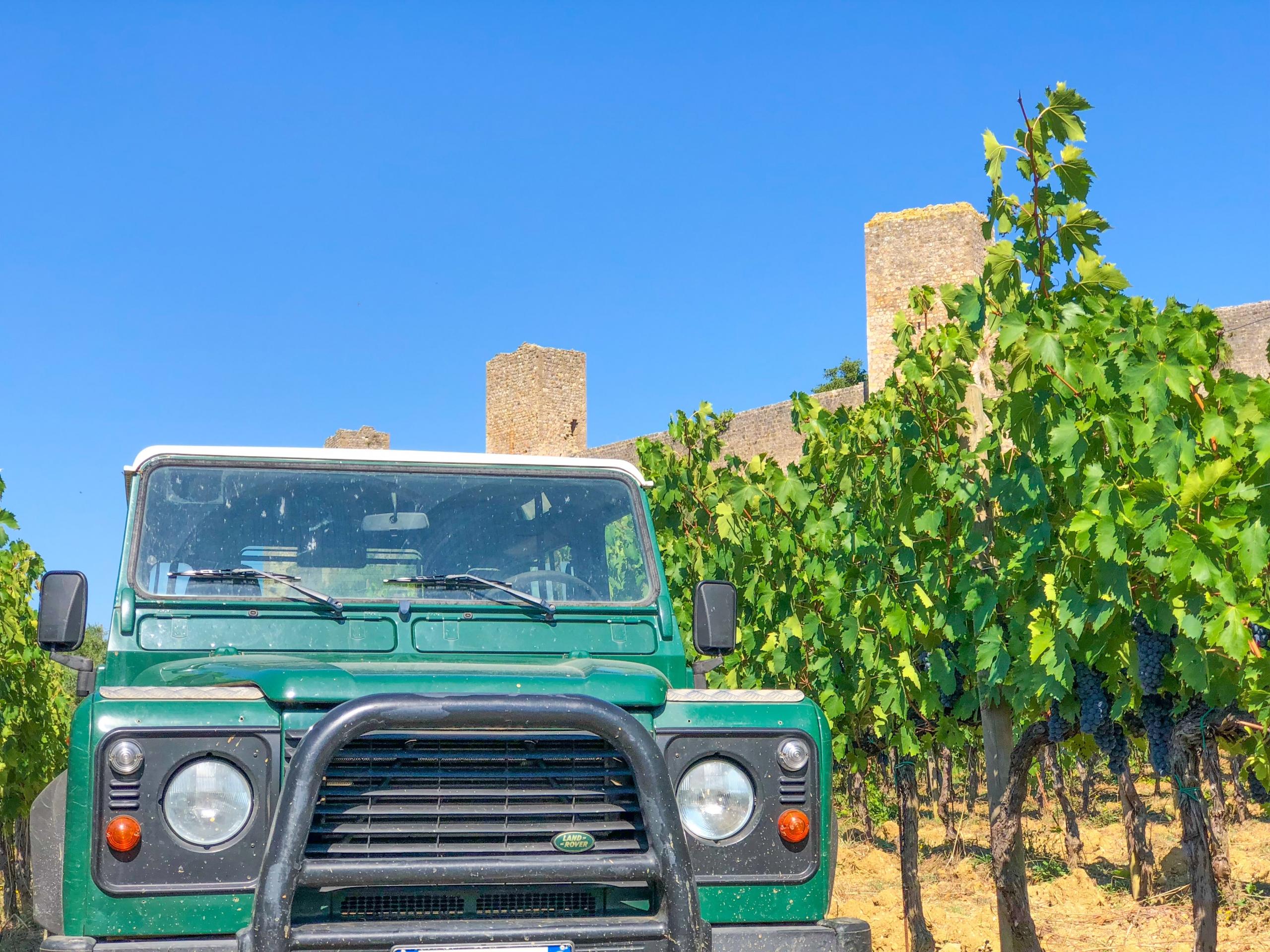 Wine Tour - Fattoria Castello di Monteriggioni