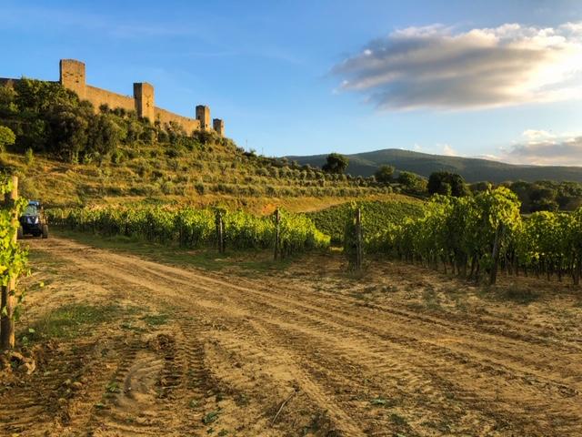 Fattoria Castello di Monteriggioni - Wine Tour